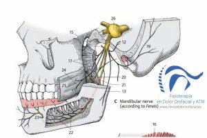 tratamiento neuralgia del trigemino